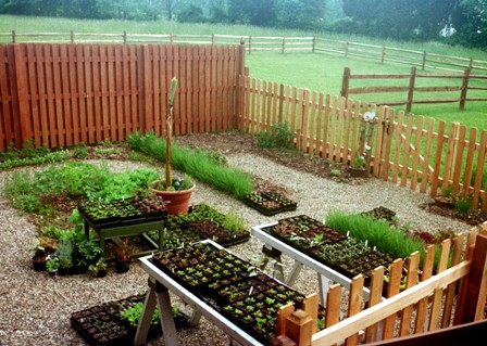 Enclosed kitchen garden Spring 03