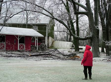 Storm damage at farm Dec 16 07