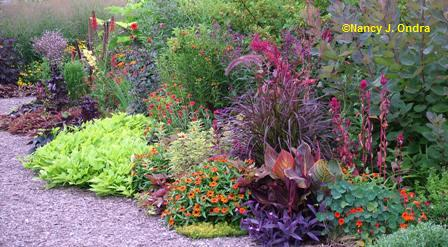 Garden Bloggers' Design Workshop – Color in the Garden - Gardening ...