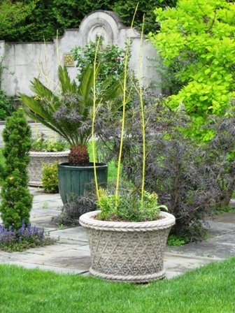 chanticleer-50909-containers-as-structure-in-rectangular-flagstone-formal-garden-resized