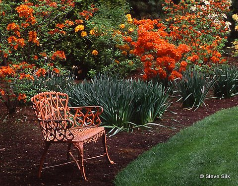 hagel-orange-chair