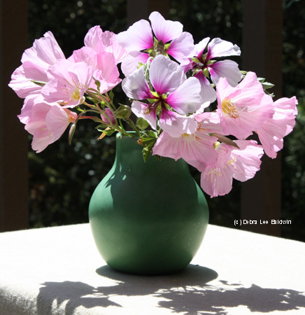 vase-of-primroses-resized