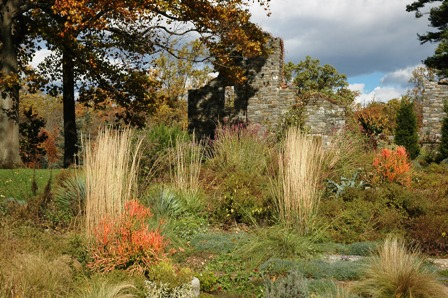Fall grasses at chanticleer-resized