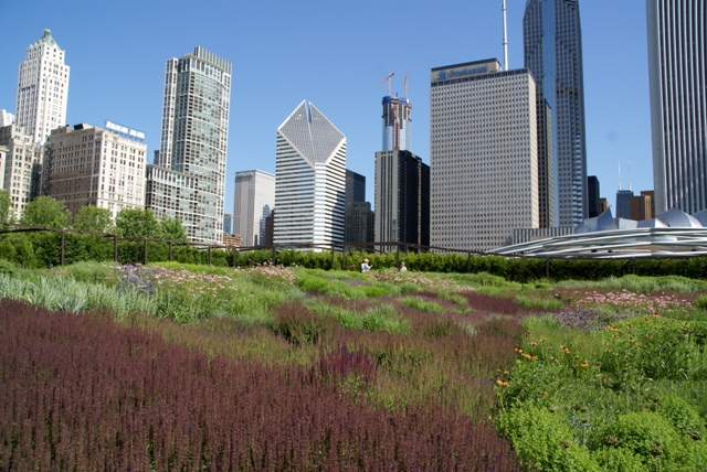 lurie garden