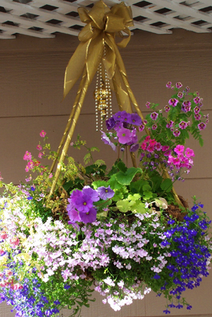 Hanging basket resized