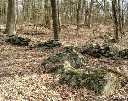 Stone walls at farm 2009