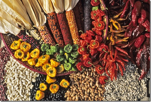 An arrangement of  Indian corn, beans varieties and chiles makes a  colorful and edible southwestern collage.
