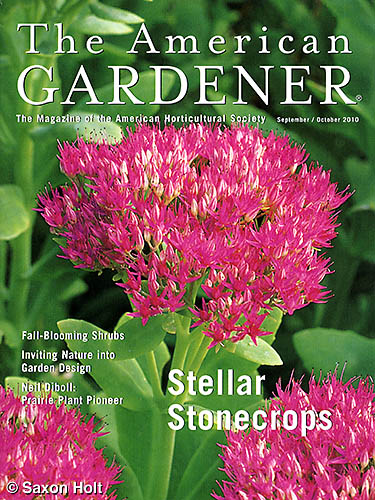 The American Gardener cover