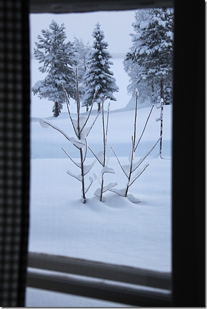 Lapland_1