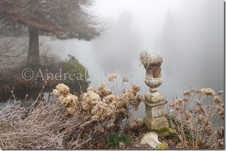 Stone urn and plinth surrounded by Hydrangea seedheads on lakes edge