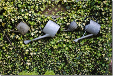 photo-2---watering-cans[1]