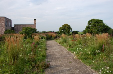 The old Oudolf nursery area planted up as a stylised meadow