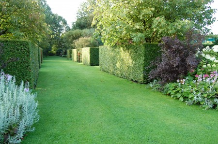 Amazingly crisp hedges are a real featue at de Kleine Plantage