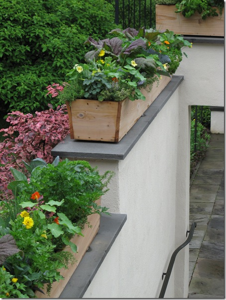 Wall planters and veggies