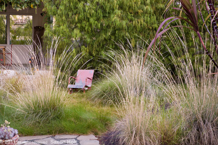 Backyard Meadow, Grass Garden with Rustic Chair