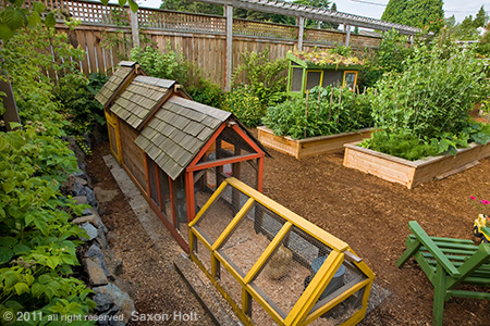 Jen Carlson&#039;s Backyard Farm Garden