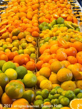 citrus varieties at Lindcove reseach facility