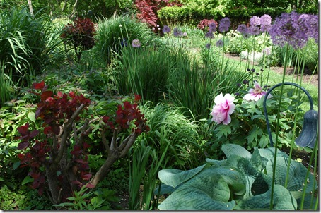 top bed-spring-with peonies