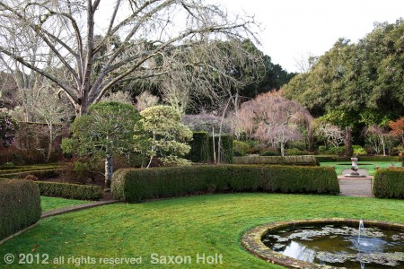 full view of Filoli wall garden in winter