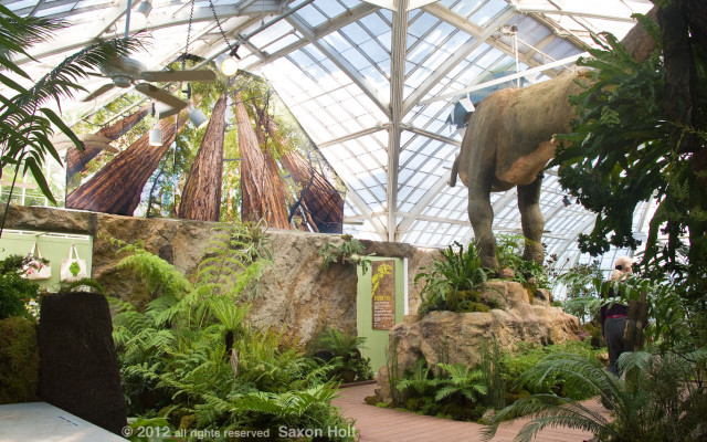 Plantosaurus exhibit at san francisco conservatory of flowers