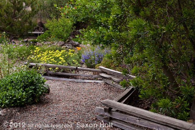 split rail fence in california native plant garden