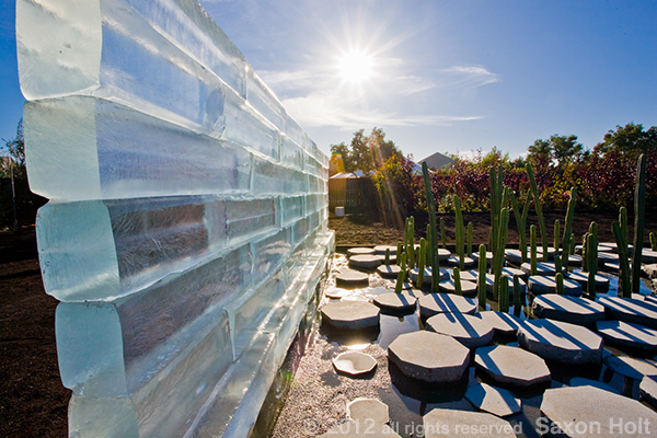 "For this garden project installation ""The Grow-Melt Project"", I photographed looking directly into the sun to emphasize the melting block of ice.  Whether or not this project is about the earth heating up or the preciousness of water or any other idea, is unimportant to the photograph.  The photo provokes us to look closely and wonder what it means."