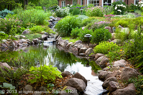 photo of stream and pond in backyard garden