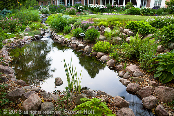 Point of view looking down into the pond and its reflection