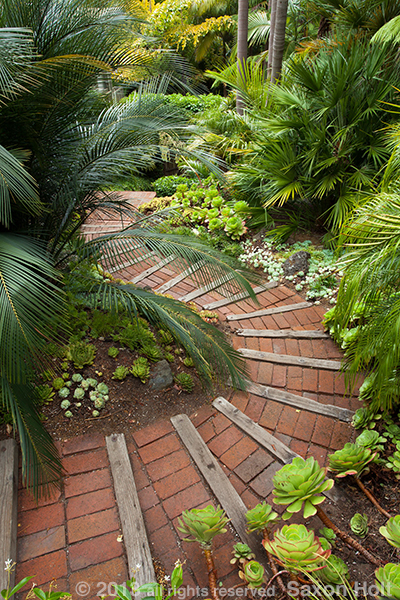 Pathway down stairs