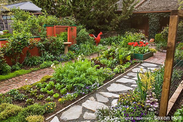 veggie bed framed by pathways