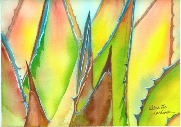 Agave watercolor DLB-1