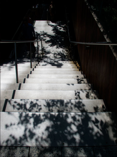 High Line tree shadows on cement stairs.