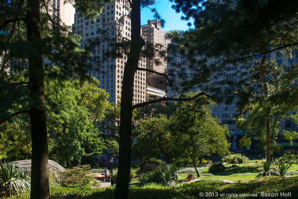 Sunny view of Manhatten framed through trees of Central Park
