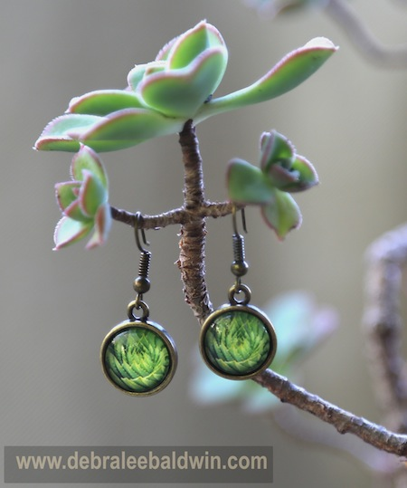 Aloe polyphylla earrings w aeonium