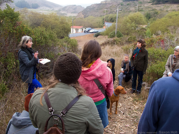 Hazel White leads a poetry walk, Marin Headlands Center for the Arts