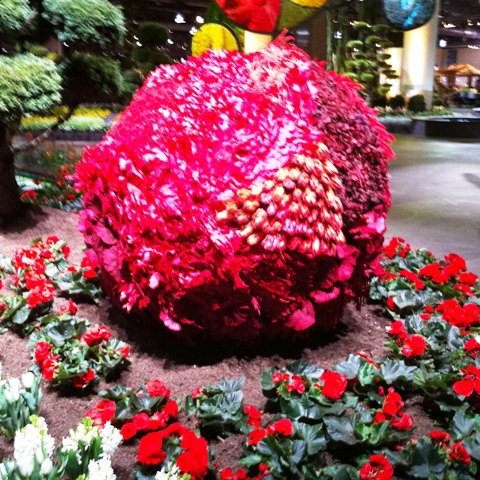 Up close of large red sphere at Philadelphia Flower Show