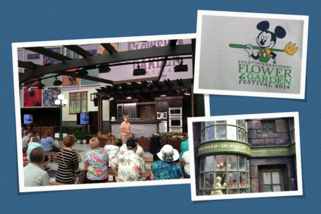March 29-April 3: Epcot Center's International Floral Festival, Orlando. Yes, I made TWO trips to Florida. Happily, my husband came along on this one. Lower right: Doesn't the herb shop in Diagon Alley (at Universal Studios) remind you of Amy Stewart's book, Wicked Plants?