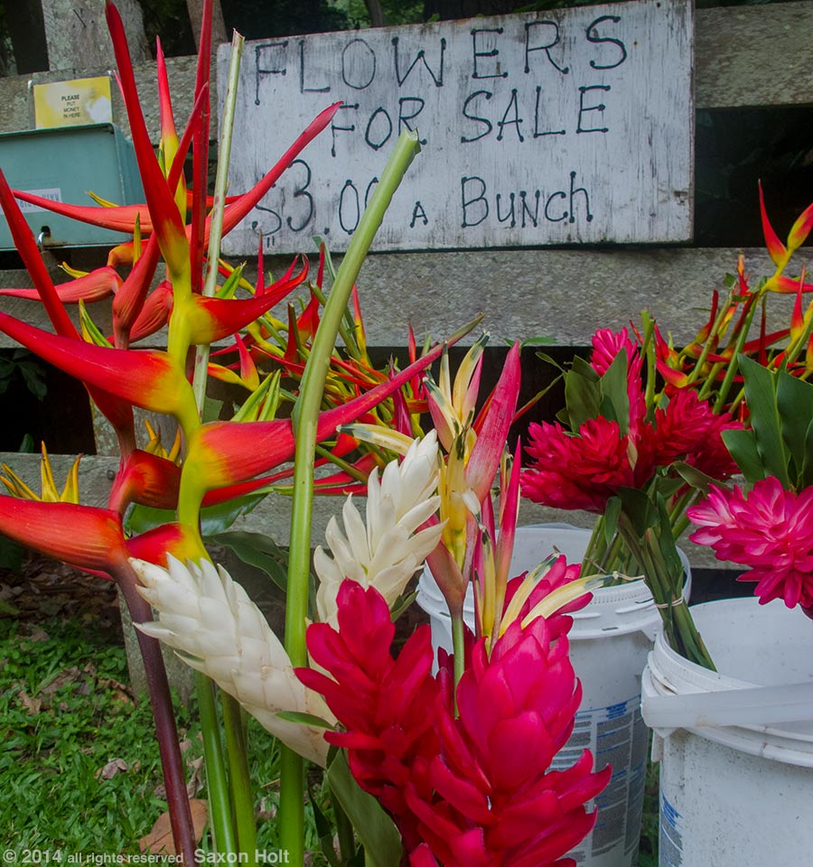 flowers for sale, Maui
